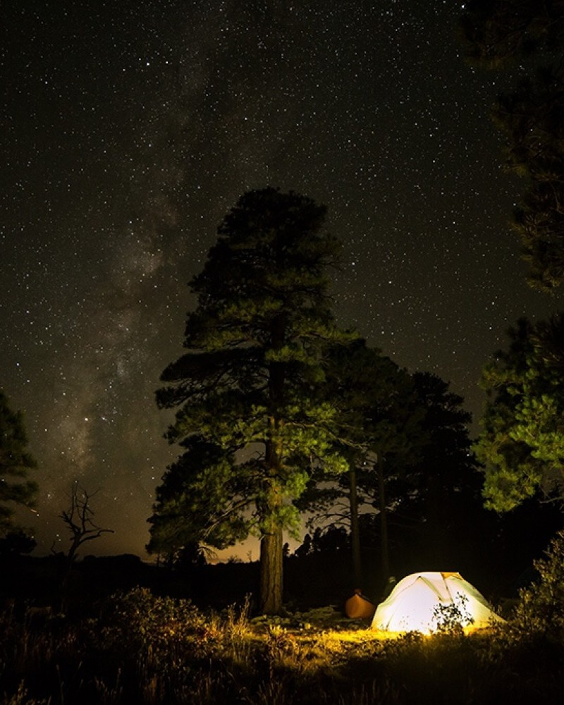 A bright lit tent in the forest with the night sky and stars above